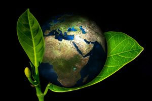 sauvegarde-planete